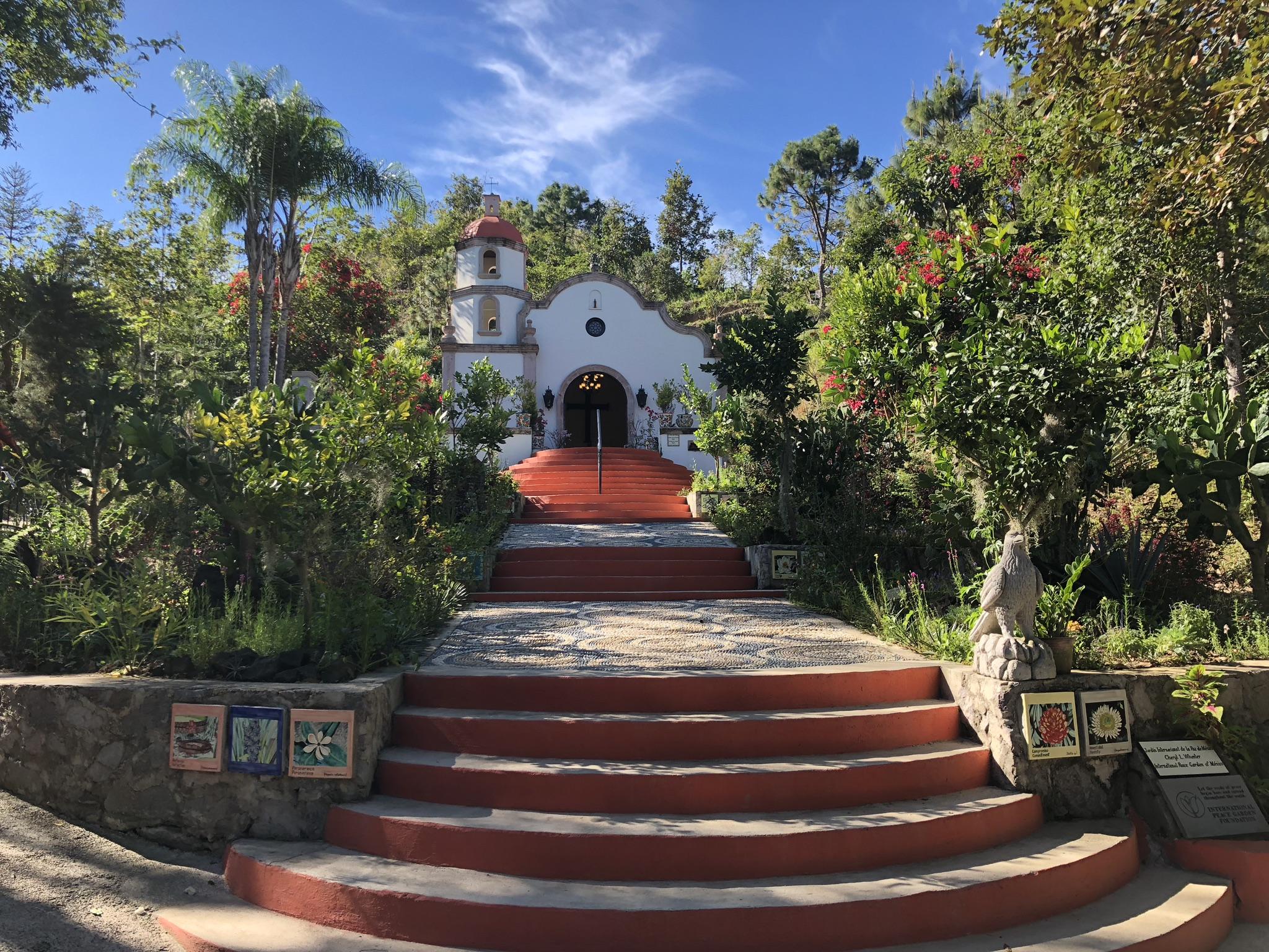 Jardin Botanica, Maito,Mascote,Talpa,Teuchitlan,Chapala