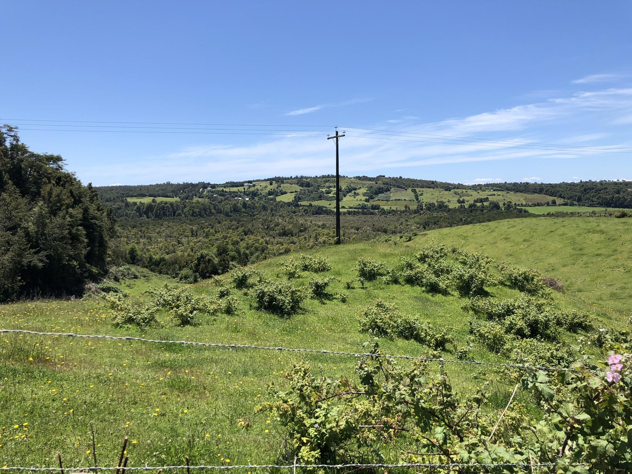Puerto Montt, Insel Chiloé, Fähre, Coyhaique, Dorf: Perito Moreno, Gregores